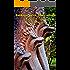 Cambogia, pietre, fiumi, villaggi: Racconto di viaggio di Sergio Ferraiolo (Viaggi e avventure Vol. 4)