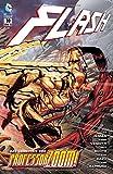 Flash: Bd. 10: Das Geheimnis von Professor Zoom