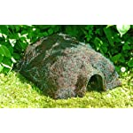 wildlife world habitat hedgehog home Wildlife World Habitat Hedgehog Home 611PphJt1aL