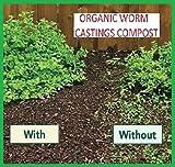 Original Organics Compost de Vers - Coulée Lombricompost 100% Bio, Engrais de Fertilisation de Sol Naturel - Sac de 40 L