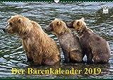 Der Bärenkalender 2019 (Wandkalender 2019 DIN A3 quer): Grizzlybären - ein Fotoshooting der besonderen Art (Monatskalender, 14 Seiten ) (CALVENDO Tiere) - Max Steinwald