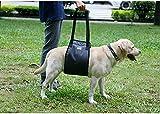 Tofern Lift Support Tragehilfe Gehhilfe mit Griff für ältere kranke verletzte Hunde, Schwarz M