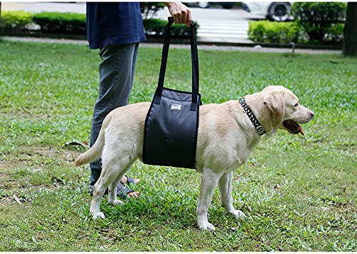 Tofern Lift Support Tragehilfe Gehhilfe mit Griff für ältere kranke verletzte Hunde, Schwarz XL