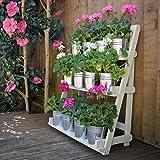 Plant Theatre - Estantería para plantas (3 niveles, madera noble), color verde Idea de regalo para amantes de la jardinería.