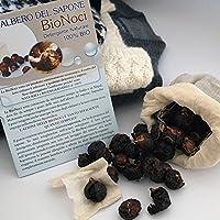 Bio Noci o Noci del Sapone - Detersivo vegetale naturale - 10 grammi