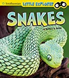 Snakes (Little Scientist) (English Edition)