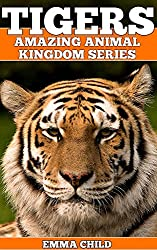 TIGERS: Fun Facts and Amazing Photos of Animals in Nature (Amazing Animal Kingdom Book 11)