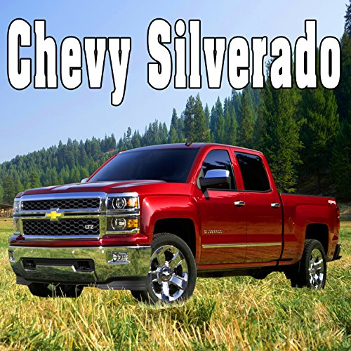 Chevy Silverado Accelerates Quickly to a High Speed in Reverse & Skids into 180 Degree Turn, From Rear Tires