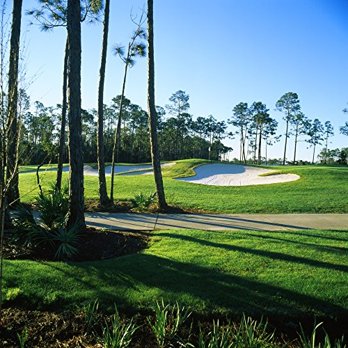 The Poster Corp Panoramic Images - Sand Trap in a Golf Course Regatta Bay Golf Course and Country Club Destin Okaloosa County Florida USA Photo Print (60,96 x 60,96 cm)