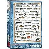 Eurographics Puzzle Süßwasserfisch, 1000 Teile