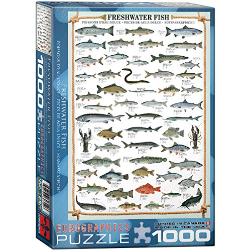 eurographics-freshwater-fish-puzzle-1000-pieces