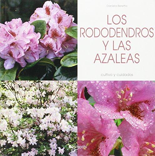 rododendros-y-las-azaleas-los-cultivo-y-cuidados-agricultura-y-horticultura