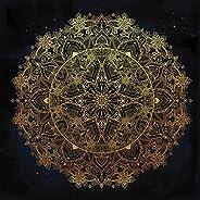 Pitaara Box Ornate Paisley Round Lace Ornament Mandala D2 Canvas Painting MDF Frame 12 X 12Inch