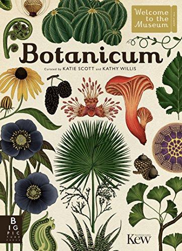 Descargar Ebooks Torrent Botanicum Leer Formato Epub
