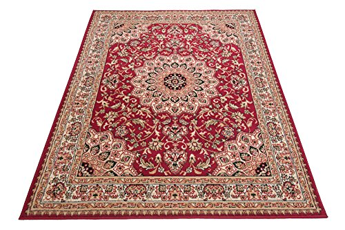 Carpeto Klassischer Orientteppich & Perserteppich mit Orientalisch Ornamente Mandala Muster Kurzflor in Beige Rot/Top Preis - ÖKO Tex (250 x 300 cm)