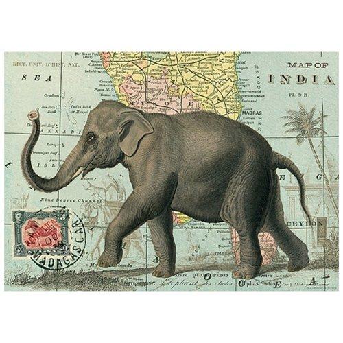 Cavallini Geschenkpapier Design Elefant
