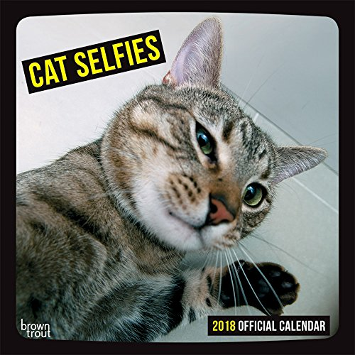 Cat Selfies 2018 Wall Calendar