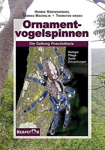 Ornamentvogelspinnen: Die Gattung Poecilotheria