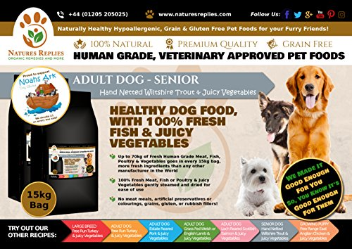 NATURES REPLIES: Natural Healthy Human Grade Veterinary Approved Grain Gluten Rice Free Best SENIOR MATURE ADULT Dog Food Wiltshire Netted TROUT in 15Kg Bags. Aids Joint Repair Mobility Cognitive Function Visual Development Reduce Inflammation Hypoallergenic Pet Foods Nutrition Clean Dog Food Mats & Bowls. Use as Kibble Edibles or Healthy Treats for ALL Breeds and Dog Training. ONLINE FREE FAST DELIVERY -