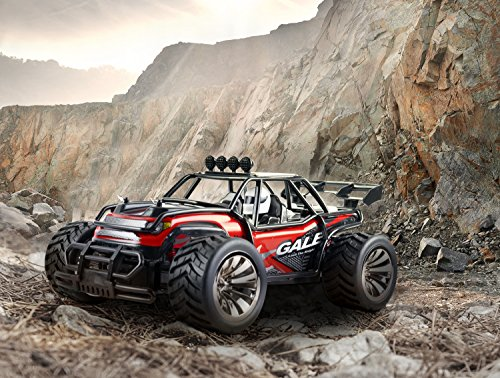SGILE 1:16 Big RC Car Remote Control Car - 2.4Ghz Off-Road Vehicle Crawlers, High Speed Fast Buggy Car Toy, 2WD Electric Racing Monster Truck Climber with 2 Rechargeable Battery for Kids Adults