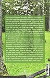 Image de Un año en los bosques (Libros salvajes)