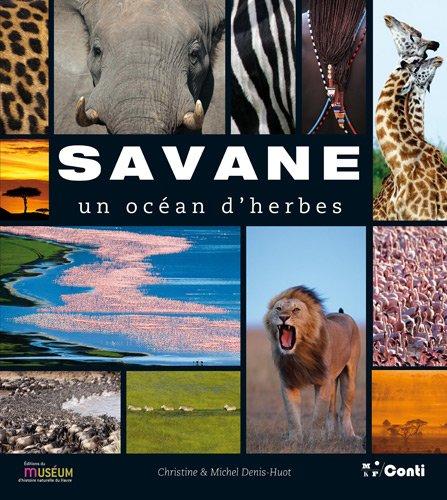 Savane : Un ocan d'herbes