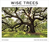 Wise Trees 2019 Calendar: Remarkable Living Monuments from Around the World