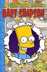 Le bouquin un brin barjo de Bart Simpson