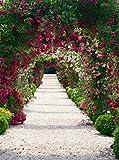 Porta arco fiore giardino matrimonio fondali fotografia stampato molla porta piante verdi bambini Outdoor fotografico sfondo 2,4x 3m