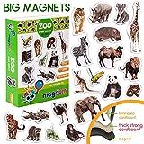 MAGDUM Foto Zoo Tiermagnete für Kinder - echte GROßE Kühlschrank Magnete für Kleinkinder- magnetisches Theater Lernspielzeug - Spiele für 3 Jährige - Magnet Spiele für Kinder - Dschungeltier-Magnete