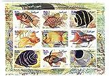 Natura e collezionismo Fauna selvatica - Pesci esotici foglietto con 9 francobolli perforati - 1999 / Somalia / MNH perfetta qualità - Stampbank - amazon.it