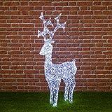 Reno de cristal, 250 LED luz fría, h. 120 cm, reno luminoso de exterior, decoración navideña, luces navideñas, figura luminosa