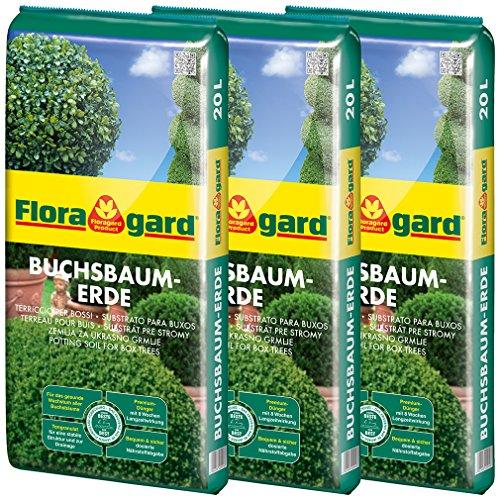 Floragard Buchsbaumerde 3x20 L - Pflanzerde für alle Buchsbäume - mit dem Naturdünger Guano - mit Tongranulat - für ein grünes, gesundes Blattbild - 60 L