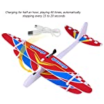Baiwka Throw Flying Glider Planes, Throwing Foam Airplane Toys, Model Foam Airplane With Manual Circling Functions...