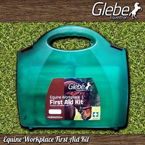 glebe-ecuestre-yarda-principal-de-primeros-auxilios-medio