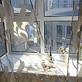 Ösenschal Farbverlauf in grau braun HxB 200x100 cm Voile transparent - Gardine Vorhang Dekoschal (1 Stück) Yonlanclot