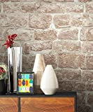 NEWROOM Steintapete braun Vliestapete Jung,Modern,Stein Muster/Motiv schöne moderne und edle Design 3D Optik , inklusive Tapezier Ratgeber