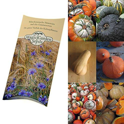 """Saatgut Set:""""Alte Kürbis-Sorten"""", 5 wohlschmeckende und dekorative Sorten als Samen zur Anzucht in schöner Geschenk-Verpackung"""