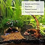 SunGrow Coco Shrimp Cave, 5x3 Inches, Coco Hut, Comfortable Hideout for Crustaceans, Perfect Breeding Area, Promotes… 9