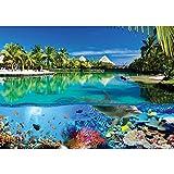 Vlies Fototapete PREMIUM PLUS Wand Foto Tapete Wand Bild Vliestapete - Delfin Fische Korallen Tiere Meer Palme Strand Hütten - no. 2044, Größe:416x254cm Vlies