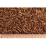 1,0 kg Mehlwürmer getrocknet, Reptilienfutter, Nagerfutter, Vogelfutter