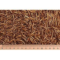 10-kg-Mehlwrmer-getrocknet-Reptilienfutter-Nagerfutter-Vogelfutter