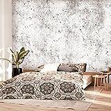 murando - Fototapete Betonoptik 400x280 cm - Vlies Tapete - Moderne Wanddeko - Design Tapete - Wandtapete - Wand Dekoration - Loft f-C-0168-a-a