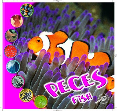 Peces: Fish (Que Es Un Animal? Biblioteca Del Descubrimiento/what Is an Animal? Discovery Library) por Ted O'Hare