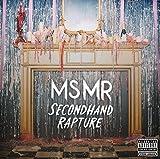 Songtexte von MS MR - Secondhand Rapture