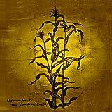 Woven Hand: The Laughing Stalk [Vinyl LP] [Vinyl LP] (Vinyl)