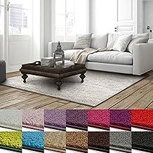 Suchergebnis auf Amazon.de für: teppich 2 m x 3 m