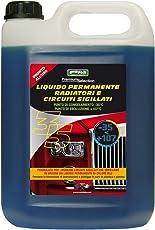 CORA 0035 Liquido Radiatori Auto, -35°C, Blu