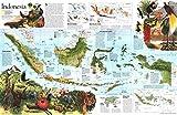 Reproduktion eines Poster Präsentation–Indonesien 2(1996)–61x 81,3cm Poster Prints Online kaufen