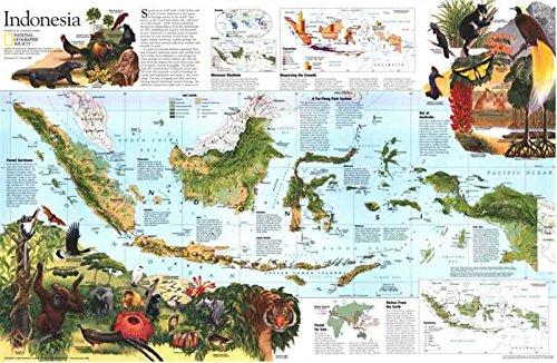 Reproduktion eines Poster Präsentation-Indonesien 2(1996)-61x 81,3cm Poster Prints Online kaufen